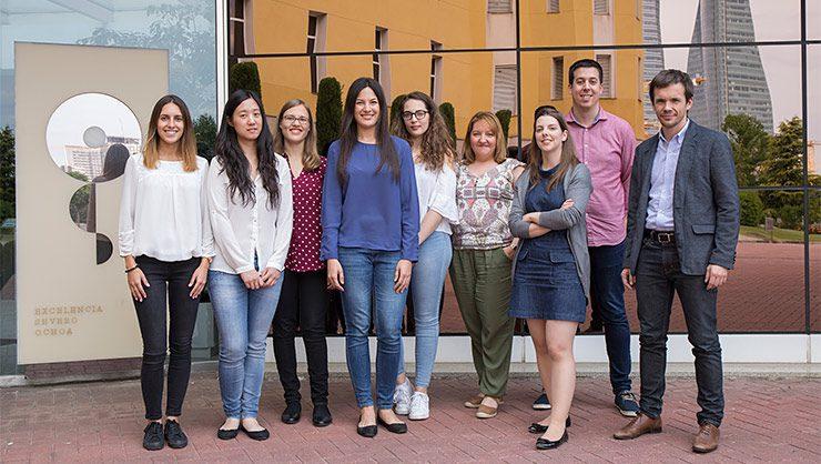 Grupo de Metástasis Cerebral del CNIO, liderado por Manuel Valiente (primero por la izquierda)./CNIO