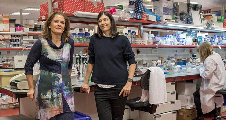 Paula Martínez (izq.) y Maria A. Blasco (drcha.), principales autoras del trabajo./CNIO