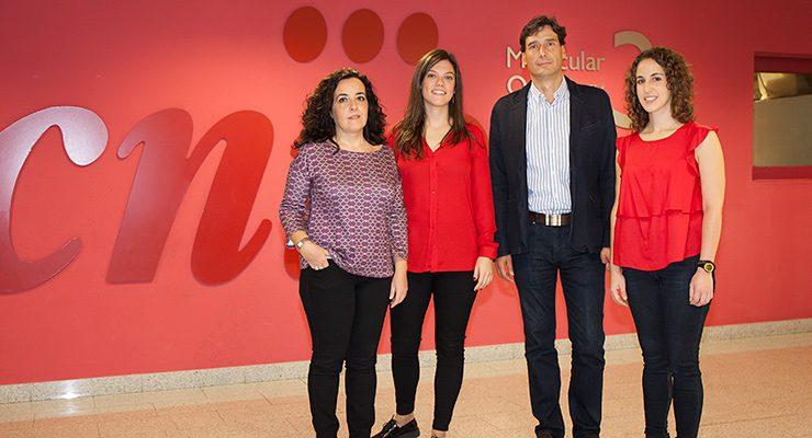 De izquierda a derecha, Cristina Pantoja, Lluc Mosteiro, Manuel Serrano y Noelia Alcázar, del Grupo de Supresión Tumoral del CNIO
