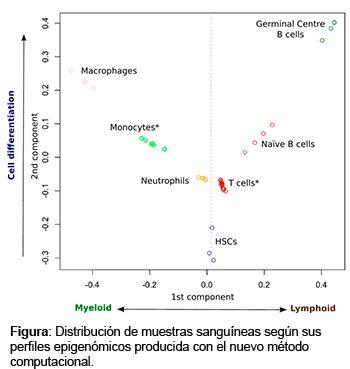 Figura: Distribución de muestras sanguíneas según sus perfiles epigenómicos producida con el nuevo método computacional.