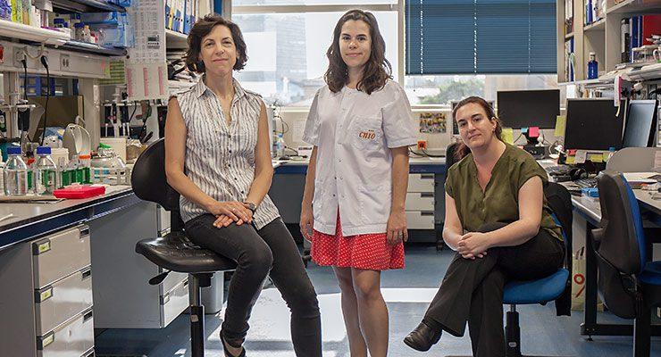 De izquierda a derecha: Cristina Rodríguez-Antona, Maria Apellániz-Ruiz y Lucía Inglada-Pérez, del Grupo de Cáncer Endocrino Hereditario./CNIO