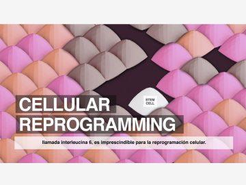 Reprogramación celular