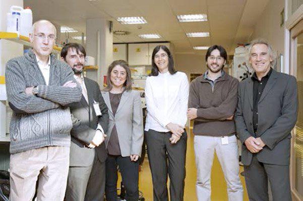 Fernando Peláez, Cristóbal Belda, Carmen Ballesteros, María Blasco, Massimo Squatrito y Erwin Wagner