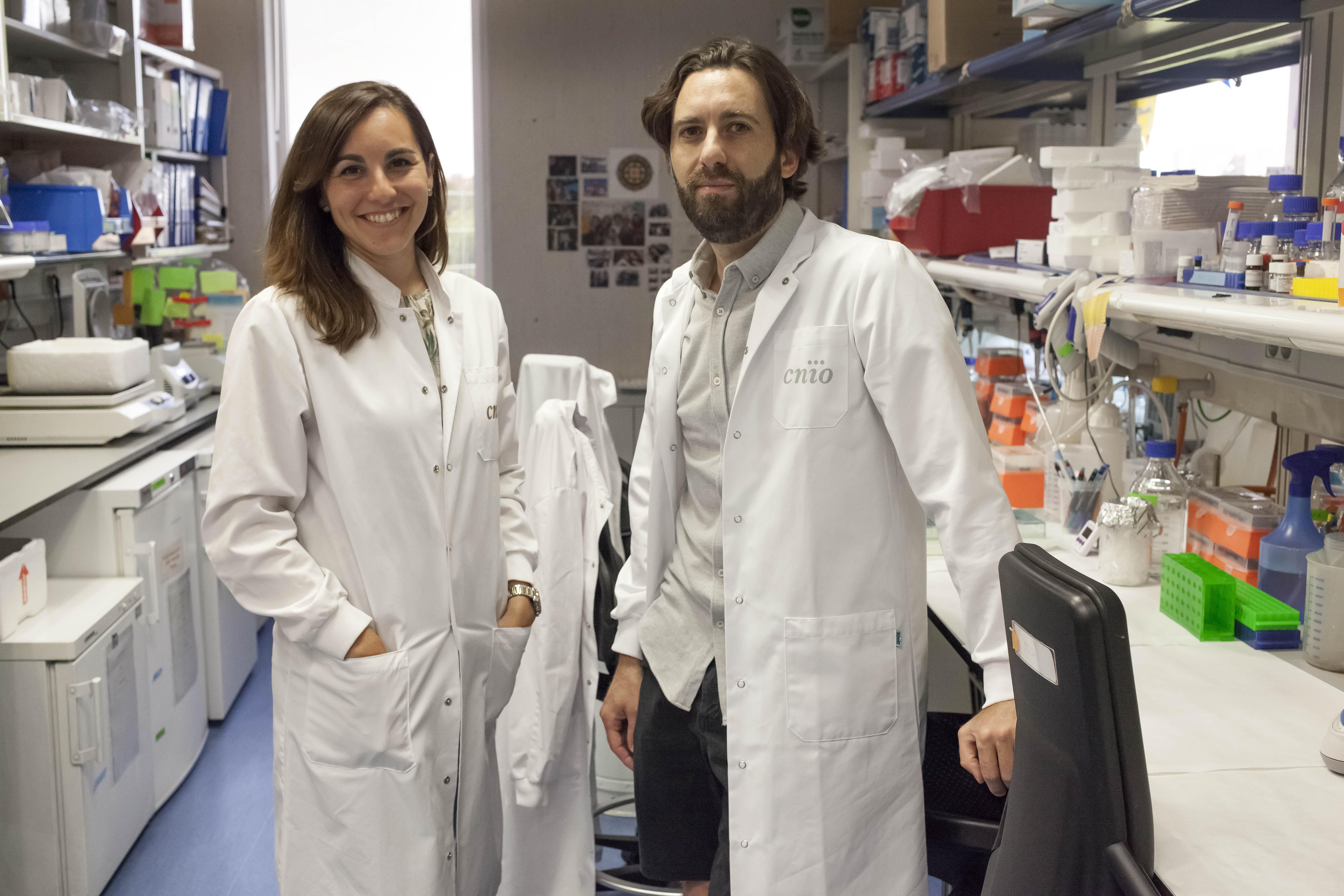 Alejo Efeyan, jefe del Grupo de Metabolismo y Señalización Celular del CNIO, y Ana Ortega-Molina, primera autora del estudio. /A.Tabernero. CNIO