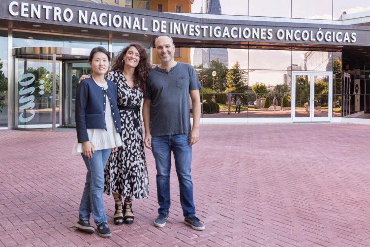 Solip Park, Eva Ortega-Paíno y Felipe Cortés, CNIO