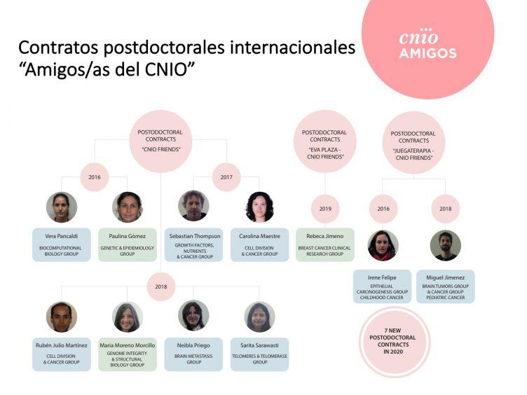 Contratos postdoctorales Amigos/as del CNIO