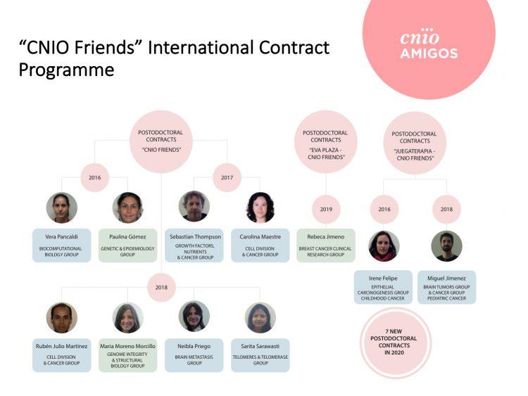 CNIO Friends Postdoctoral Programme