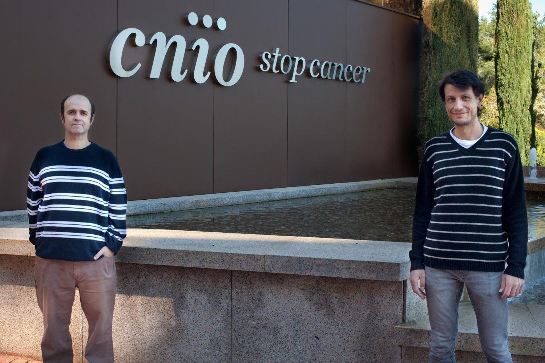 Researchers Óscar Fernández-Capetillo (left) and Emilio Lecona (right). /CNIO